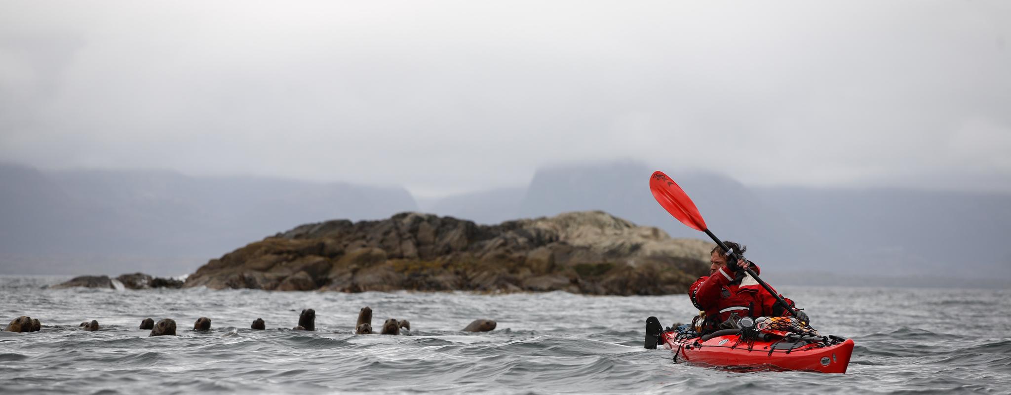 Cours Kayak de Mer