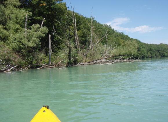 Descente du Rhône en Kayak en Octobre