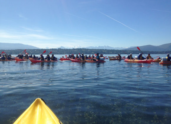 Randonnée Kayak sur le lac Léman